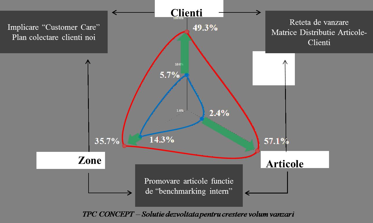 TPC Axe Clienti-Articole-Zone